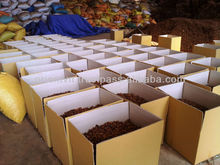 Dried Star Aniseed/Anise seeds with stems spices price in herb from Vietnam