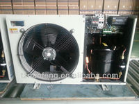 2 HP Condensing unit for Small Cold Room and Supermarket freezer