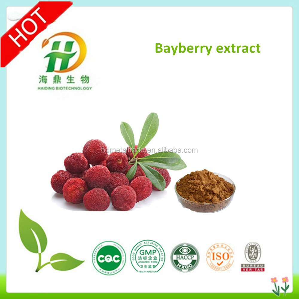 Bayberry Bark Extract/Myrica Rubra Extract/Bayberry Bark Extract Powder