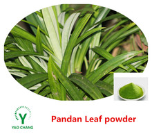 Hot Sale 100% natural Pandan leaf powder