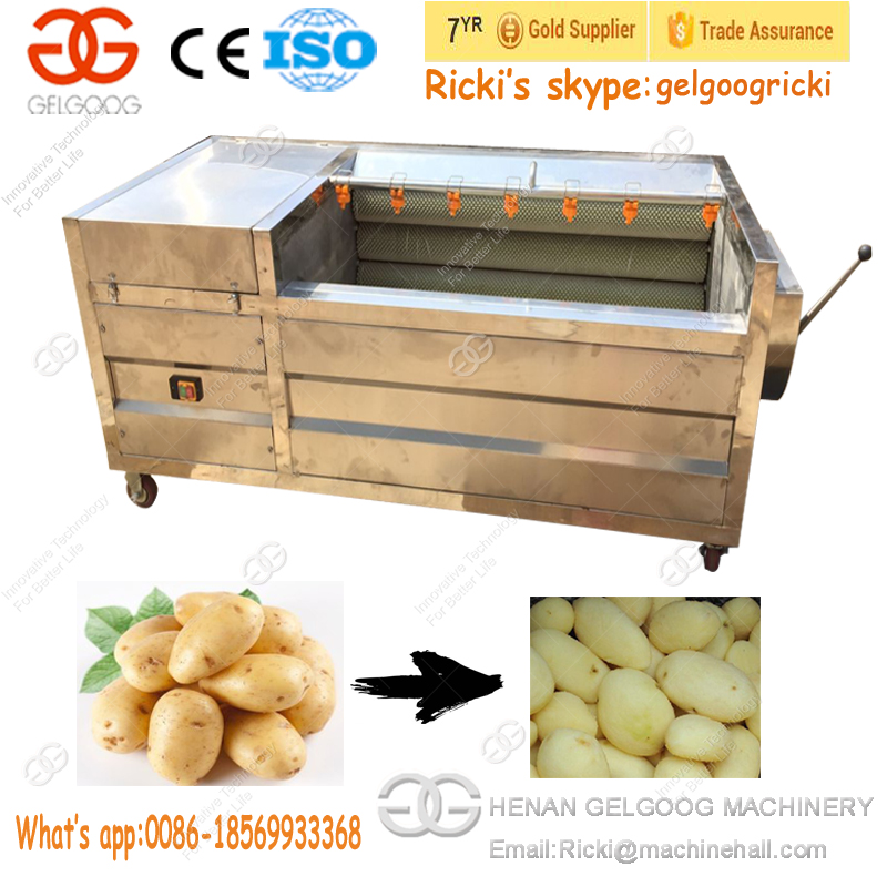 Factory Prices Industrial Apple Cassava Potato Date Ginger Washer Dryer Fruit Vegetable Washing and Drying Machine