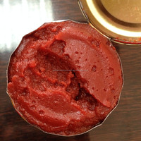Tomato paste soft open organic food