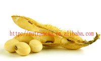 Factory Supply Soybean Extract