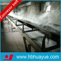 Professional Heat Resistant /High Temperature Conveyor Belt for Sintered Ore