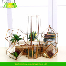 Wholesale Price indoor outdoor romantic wedding clear glass prism plant terrarium