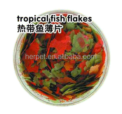 Aquarium Fish Food, Flake Fish Food, Tropical Fish Food