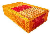 Wholesale plastic chicken transport cage