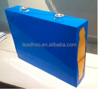 Lifepo4 Battery Cells 24V100AH