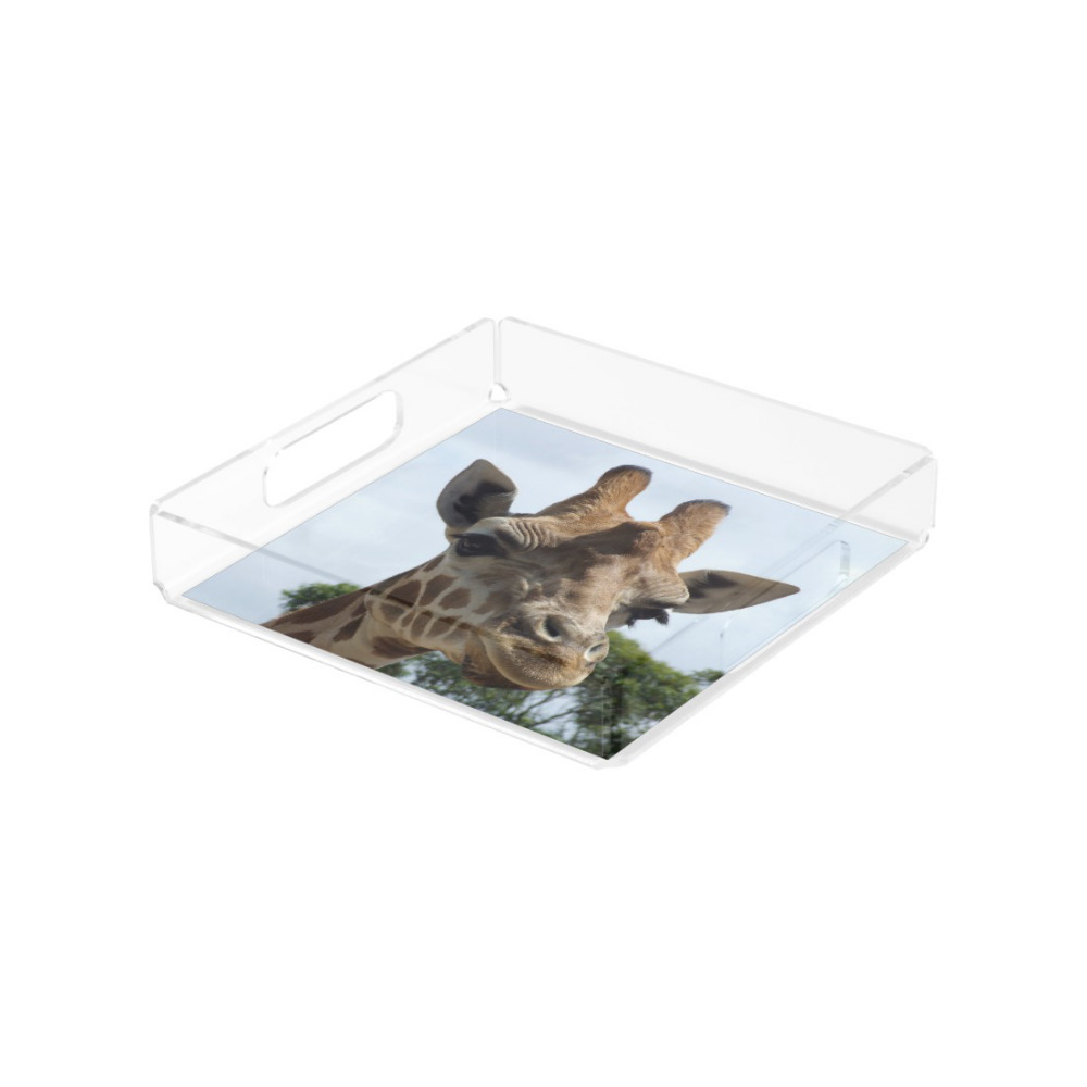 Clear lucite square acrylic paper serving tray with insert