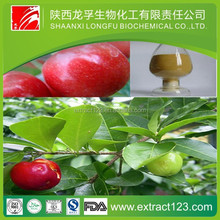 High quality black cherry extract powder