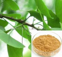 Ginkgo Flavonoid Glycosides 28%min /Ginkgo Biloba Extract /GMP Manufacturer