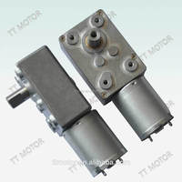 China TT MOTOR of 12V DC worm gear motor