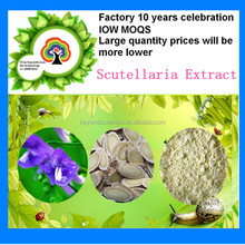 High Quality Radix Scutellaria Baicalin Extract