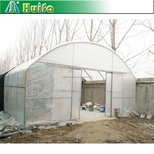 Customized Size Poly Tunnel Single-span Film Green House For Agricultural For Sale