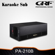 Dual 10 Inch Active Karaoke Speakers Subwoofer