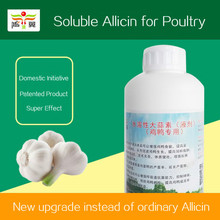 National Patent Product 100% Pure Garlic Extract, Pure Natural Garlic Extract Allicin Powder
