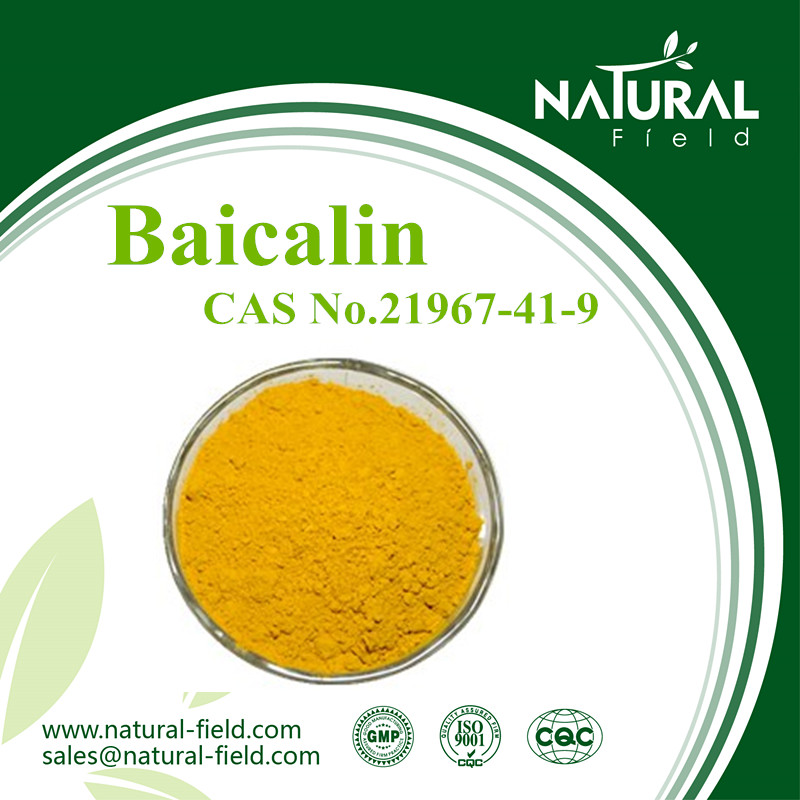 Chinese manufacture supply CAS No.21987-41-9 baicalin 80% 85%