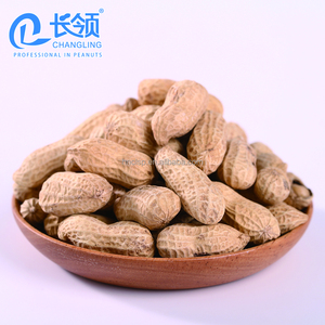 roasted spicy peanuts kernel