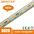 double White Color Changing Dimmable Control CCT Adjustable 3000K 6500K SMD 5050 Flexible led strip