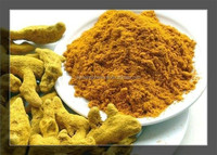 China Supplier Fresh Turmeric Root Extract/Kasturi Turmeric Powder