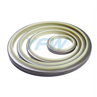 PU DUST SEAL