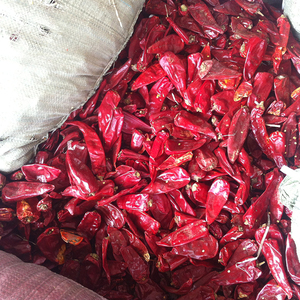 Customized professional good price of Dried Red Chili Pepper