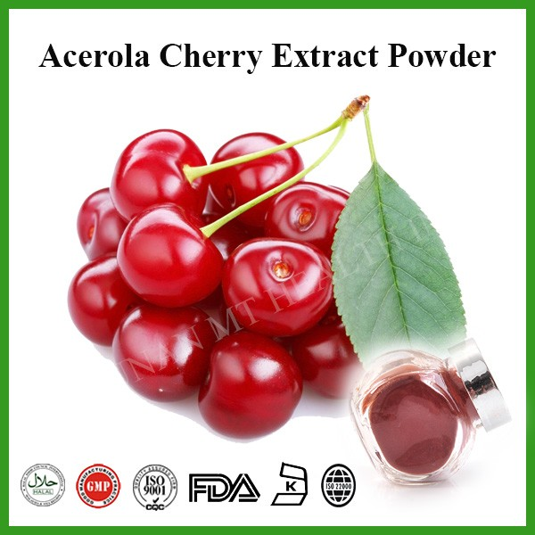 Factory supply 25%Vc HPLC Acerola Cherry extract powder, Malpighia glabra extract