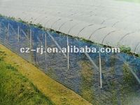 virgin HDPE square wind proof net for grape orchard