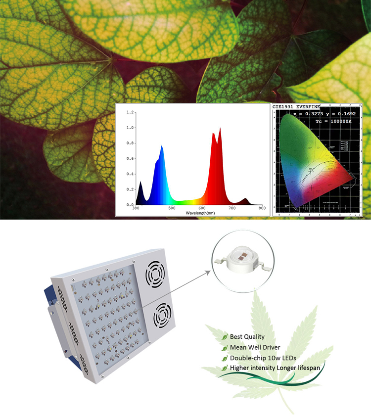Full Spectrum Led Grow Light 600w with smart control