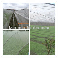 Agricultral use HDPE plastic anti UV green solar shade net
