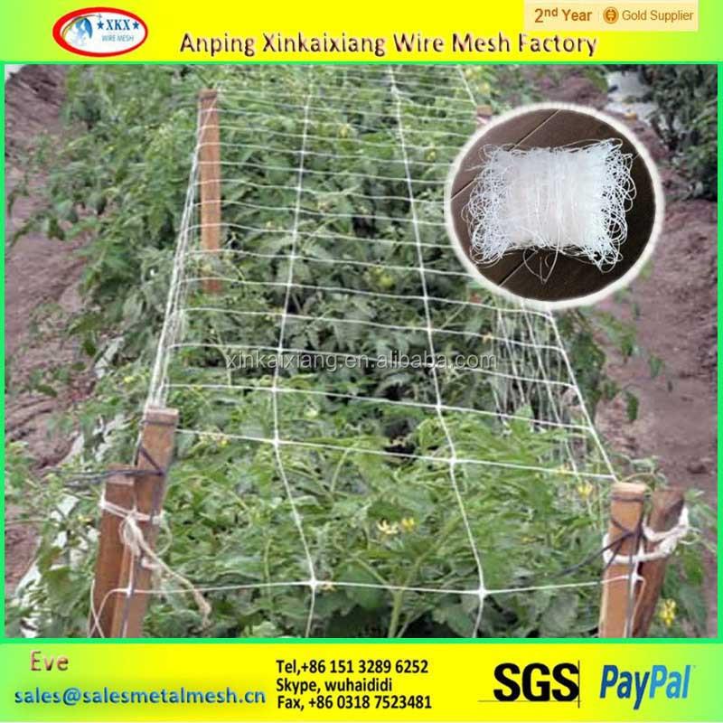 chine fabricant treillis pour plante grimpante filet plastique id de produit 1996799221 french. Black Bedroom Furniture Sets. Home Design Ideas