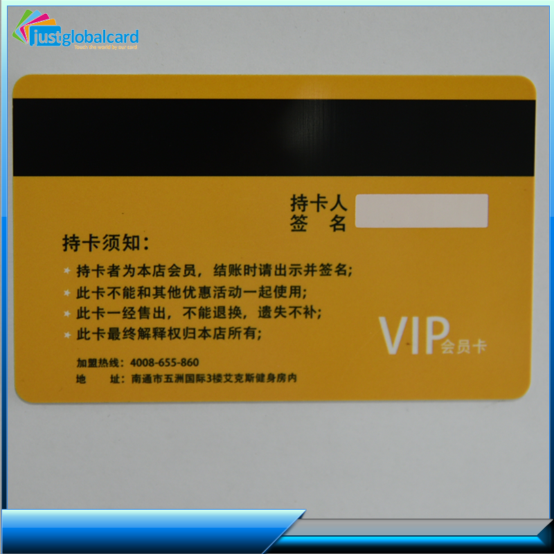 Customized Blank Inkjet PVC Photo Student ID Cards with Hico Magnetic Stripe