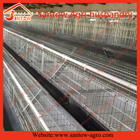 A type automatic layer chicken poultry feeding system for sale