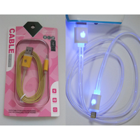 Portable Flashing Led Data Line Led