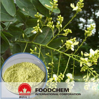 China Wholesale Sophora Japonica Extract Quercetin