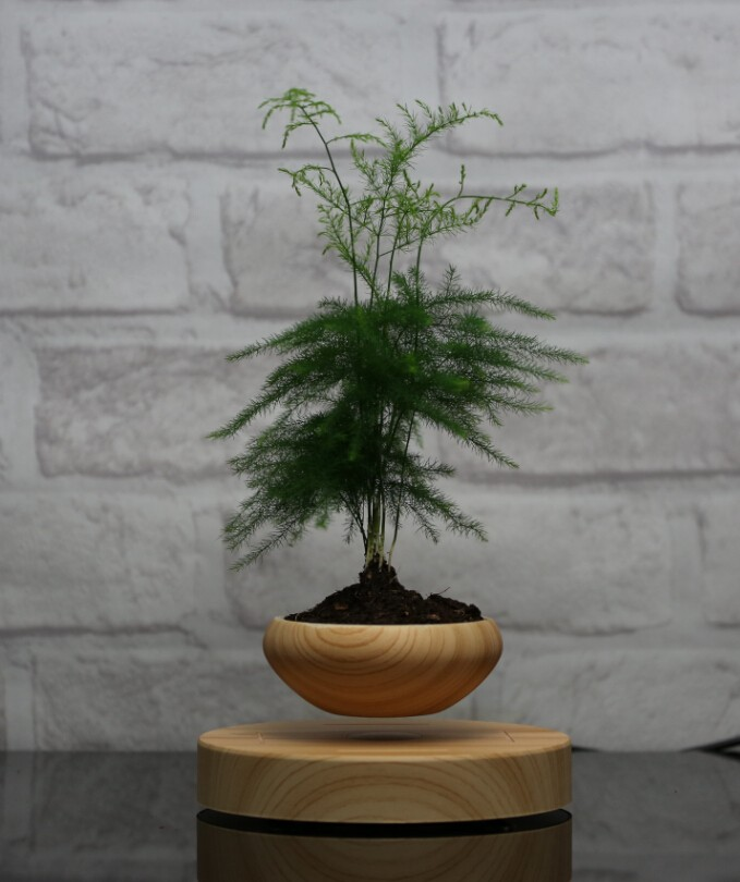 indoor decorative levitation pots planters