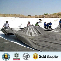 HDPE Geomembrane pond liners for dam liners