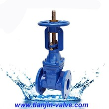 ANSI CS WCB Wedge Gate Valve with Rising Stem PN16 DN80