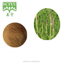 100% Natural Pure horsetail extract powder