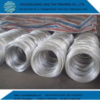 Galvanized decorative twist tie Wire