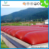 Veniceton China cow dung biogas plant for cow farm