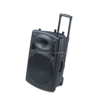 2017 New Product professional 18 inch pa speaker trolley speaker RMS60W with bluetooth ,USB,SD,Echo function
