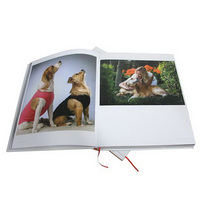 Photo album book newly design eyesight protect paper