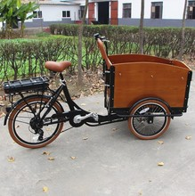 electric tricycle for take pets and cargo trike with three wheels