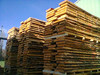 BEECH sawn timber