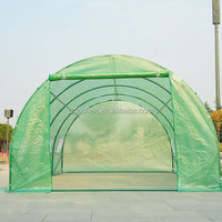 12m Tunnel Greenhouse