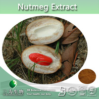 Hot sale Myristicin powder,Semen Myristicae extract,Grass nutmeg extract