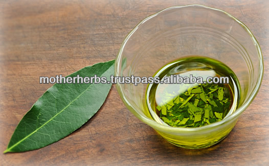 Suppliers of Bay Leaf Oil For Rheumatism