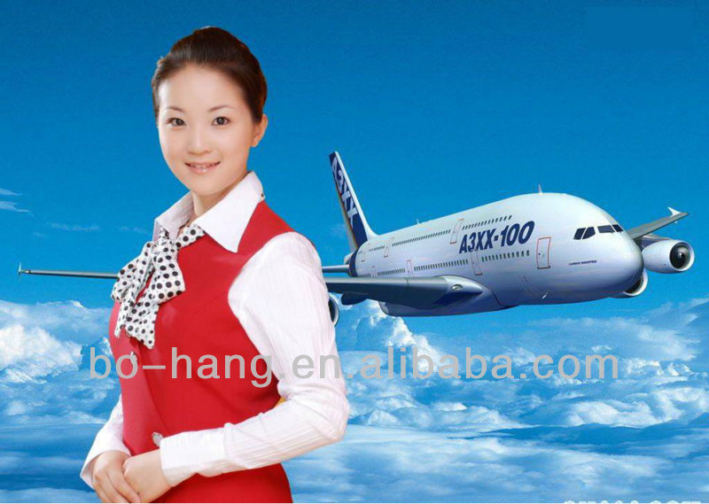 OMDB AIR transport /SEA freight agency dangerous cargo imitation brand from Shanghai to Dubai by EXPRESS DDU/DDP---Amy