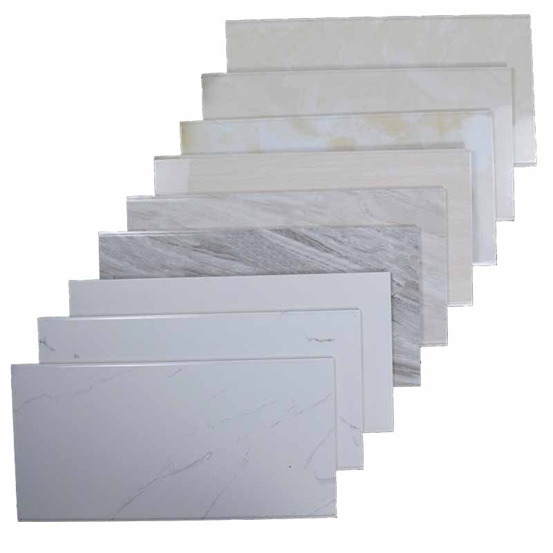 Ceramic Wall Tile 200x300mm (2310E)